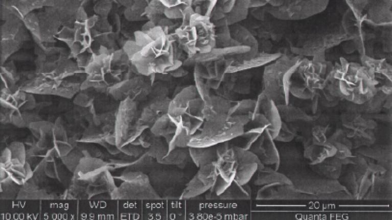 Mikroskop-Aufnahme von kristallinen Polyimiden