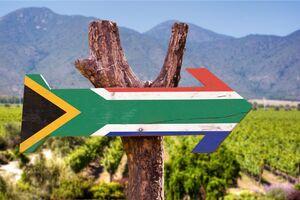 Südafrikanische Flagge aufgemalt auf Holzpfeil in Landschaft